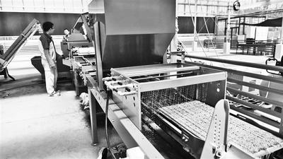 """【特色小镇】鹿泉区中以农科小镇:神奇的智能""""农业工厂"""""""